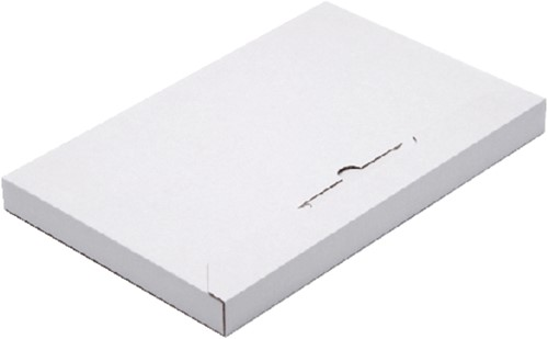 BRIEVENBUSBOX BUDGET A4 350X230X29MM -VERZENDDOZEN 570283 WIT