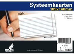 SYSTEEMKAARTEN A6 105X148MM 100 STUKS -SYSTEEMKAARTEN K-6103