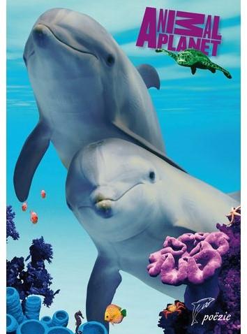 Poezielabum animal planet dolfijnen -D40684 240684