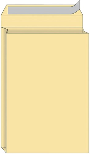 ENVELOP QUANTORE MONSTERZAK 230X350X38 -HUISMERK ENVELOPPEN 14332 170GR CR