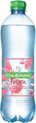 WATER CHAUDFONTAINE FUSION POMPELMOES -KOUDE DRANKEN 458538 FLES 0.50L